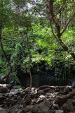 Waterfal Bagaces在哥斯达黎加 库存图片