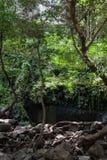 Waterfal Bagaces στη Κόστα Ρίκα στοκ εικόνα
