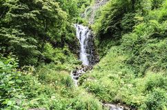 Waterfal into the forest Royalty Free Stock Image