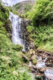 Waterfal into the forest Royalty Free Stock Photography