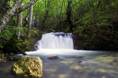 Waterfal i skog Arkivfoto