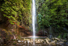 Waterfal at levada walk 25 fountains, Madeira island Stock Photos