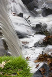 Waterfall–4. Waterfall beats down on rocks and branches in spillway after heavy rains stock photo