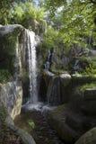 Waterfall. Jungle waterfall Royalty Free Stock Photo