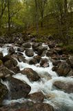 Waterfall. In the middle of the spring scotland forest Stock Images