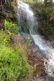 Waterfall. A waterfall on Table Mountain - South Africa Stock Photos