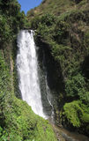 Waterfall. Near Otavalo, Ecuador Stock Images