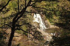 Waterfall. View of a waterfall through a silhouetted tree Royalty Free Stock Photography