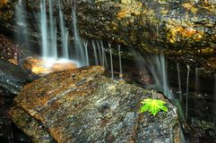 Waterfall. In mountain of czech republic royalty free stock photography