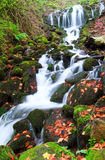 Waterfall. In autumn from Turkey Royalty Free Stock Images