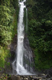 Waterfall. The waterfall Gitgit is the highest of the island of Bali stock images