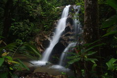 Waterfall. Natural spring waterfall in forest Royalty Free Stock Images