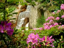 Waterfall. A view on a waterfall in a japanese garden Stock Image