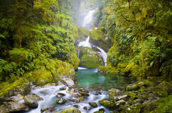 Waterfall. Mackay Falls on New Zealand's famous Milford Track royalty free stock images