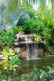 Waterfall. Small waterfall in tropical garden Royalty Free Stock Photography