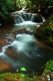 Waterfall. Pong nam dang waterfall, thailand Royalty Free Stock Photos