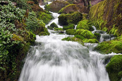 Waterfall. Picturesque waterfall among green rocks Royalty Free Stock Photography