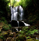 Waterfall. Beautiful waterfall in the woods stock photography