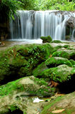 Waterfall. Pong nam dang waterfall, thailand Stock Photo