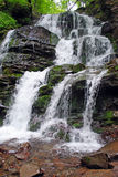 Waterfall. The Waterfall in Carpathian mountain Royalty Free Stock Image