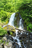 Waterfall. Small waterfall in russian forest Stock Photography