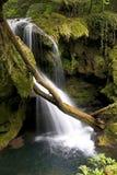 Waterfall. Vaioaga Waterfall in the Anina Mountains - Caras-Severin county - Romania Stock Photography