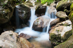 Free Waterfall Stock Photography - 16889682