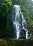 Waterfall. A soft waterfall in green foliage Stock Images