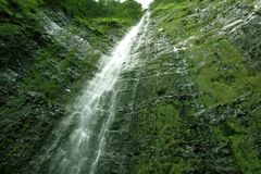Waterfall. Part of a huge high waterfall falling down a green mountain in the kingdom of nature Stock Images