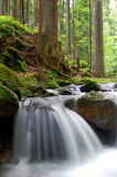 Waterfall. In the national park Sumava-Czech Republic Stock Photos