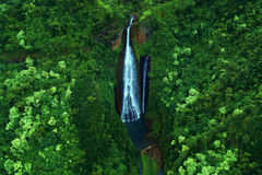 Waterfall. A big waterfall in the rainforest of Hawaii Royalty Free Stock Photos