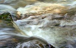Waterfall. In the river wild Stock Photography