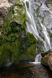 Waterfall. Powerscourt Waterfall  surrounded by woods and specimen plants. Wicklow, Ireland Royalty Free Stock Image