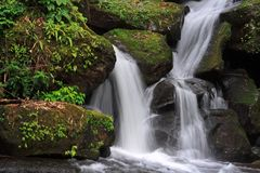 Waterfall. Beautiful and peaceful waterfall in the nature Stock Photography