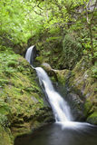 Waterfall. Natural waterfall in tranquil green forest. Dolgoch falls, Wales Stock Photo