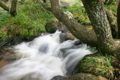 Waterfall 2. A waterfall in a moorland stream Stock Images