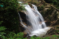 Waterfall. A small waterfall in a jungle Stock Image