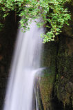 Waterfall. And green leaves in the forest Stock Image