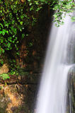 Waterfall. And green leaves in the forest Royalty Free Stock Photo
