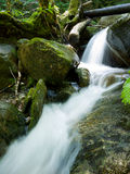 Waterfall. Water flowing over moss covered rocks at Sculpture rocks State Park, NH stock images
