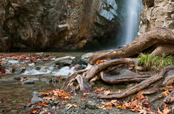 Waterfall at Troodos mountain, Cyprus Royalty Free Stock Photography