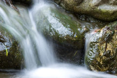 Waterfall. A cascading waterfall with rocks and leaves Stock Photography