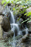 Waterfall. A cascading waterfall with rocks and leaves Stock Photos
