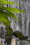 Waterfall. A peaceful waterfall located in Taiwan Royalty Free Stock Images