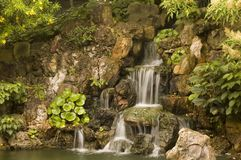 Waterfall. Flanked by generic vegetation Stock Images