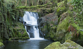 Waterfall. In Galicia (northern Spain Stock Photo