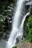 Waterfall. In bifengxia yaan China Royalty Free Stock Image