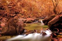 Waterfall. Beautiful photo of autumnal waterfall royalty free stock photos