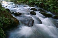 Waterfall. Stream Royalty Free Stock Photo