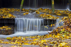 Waterfall. In the forest. beautiful background of stone, water, moss, tree, woods Stock Images